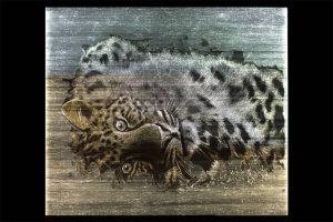 LEOPART-Dekostoffe-paneel-dreamlux